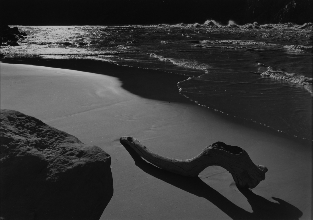 Driftwood on Beach at Granite Falls, Grand Canyon National Park, Arizona  1956 Philip Hyde (1921–2006)