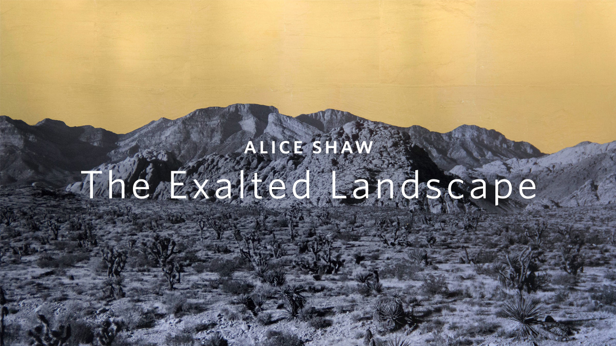 Alice Shaw: The Exalted Landscape