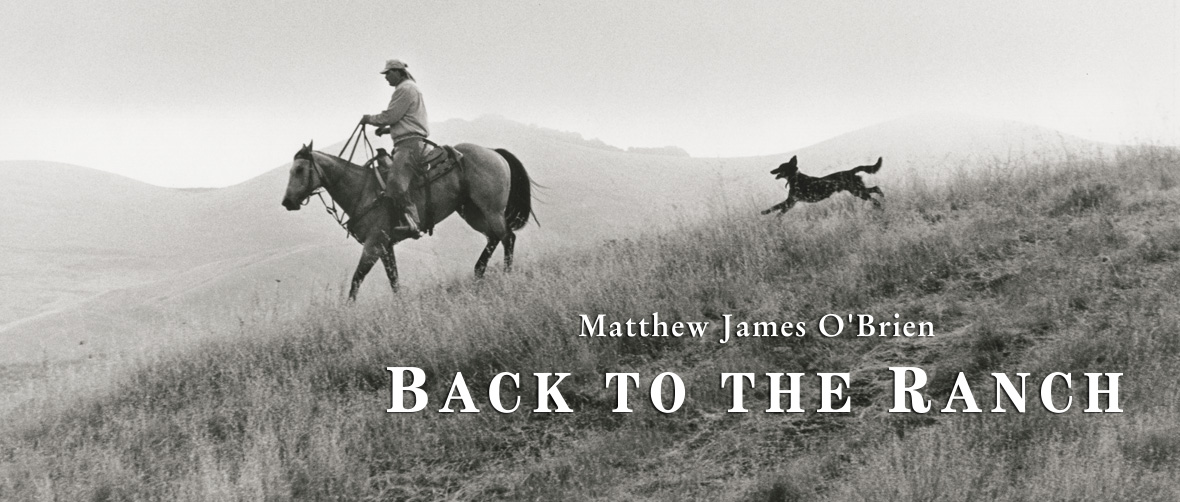 Matthew James O'Brien: Back To The Ranch