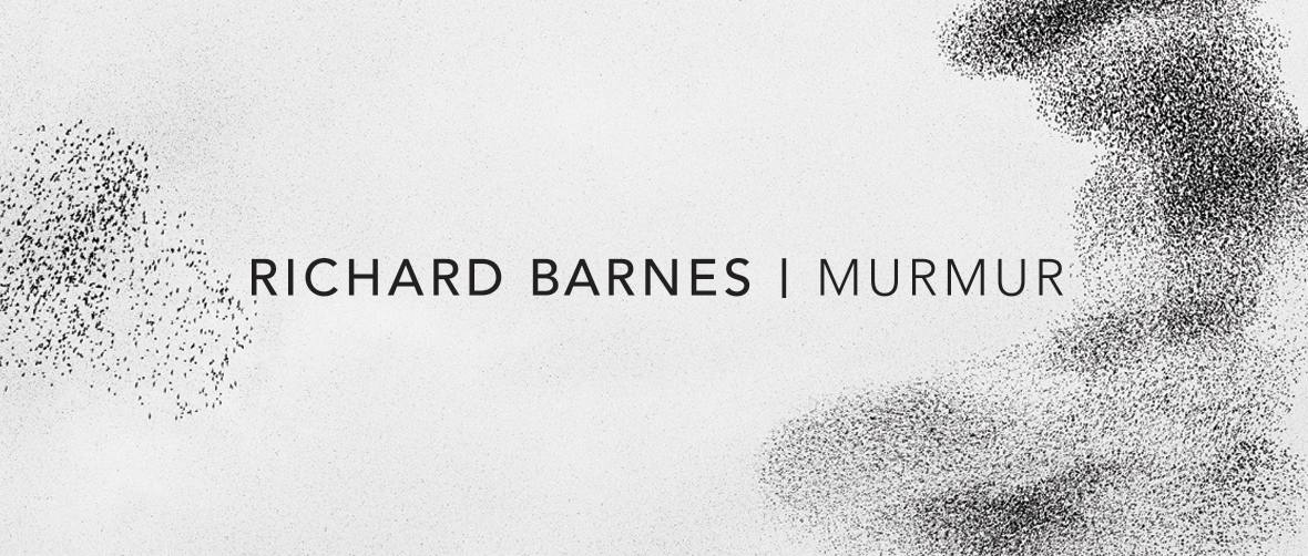 Richard Barnes: Murmur