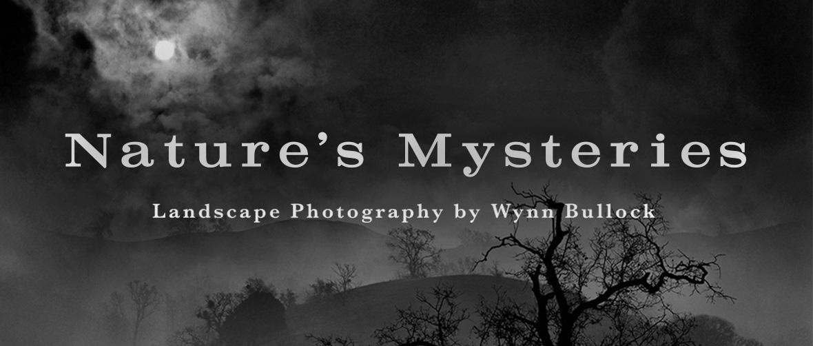 Nature's Mysteries: Landscape Photography by Wynn Bullock