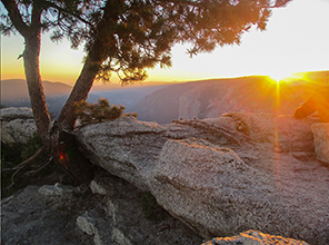 Parks in Focus: Ten Years at Yosemite