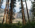 Sequoia YMCA