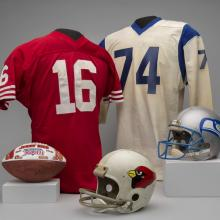A selection of material representing the NFC West Division of the National Football League