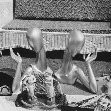 Models  1983