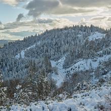 Sierra View, Alta, California  2019