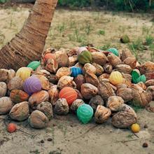 Cocos (Coconuts)  2011 by Alejandro Durán (b. 1974)