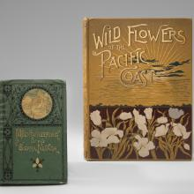 Wild Flowers of the Pacific Coast  1887; Mountaineering in the Sierra Nevada  1872