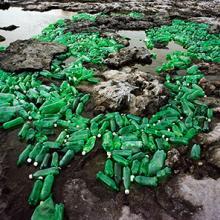 Algas (Algae)  2013 by Alejandro Durán (b. 1974)