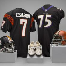 A selection of material representing the AFC North Division of the National Football League