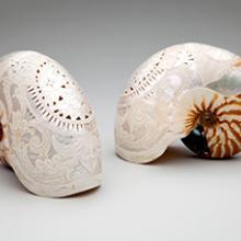 Carved nautilus shells