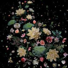 Hong Kong Soup:1826, Lotus Garden  2011