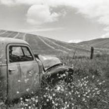 Untitled, from the series Back to the Ranch, Northern Livermore Country, Alameda County, California  1994