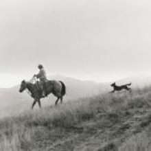 Untitled, from the series Back to the Ranch, Cull Canyon, Alameda County, California  1992  Matthew James O'Brien digital print Courtesy of the artist R2013.3401.002